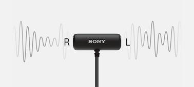 Kuva, jossa ECM-LV1 poimii äänen useista suunnista.